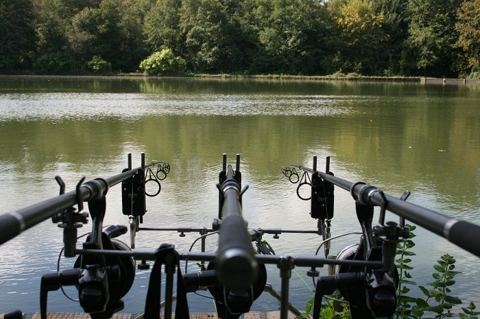 17 best images about carp fishing on pinterest best bait for Most expensive fishing rod