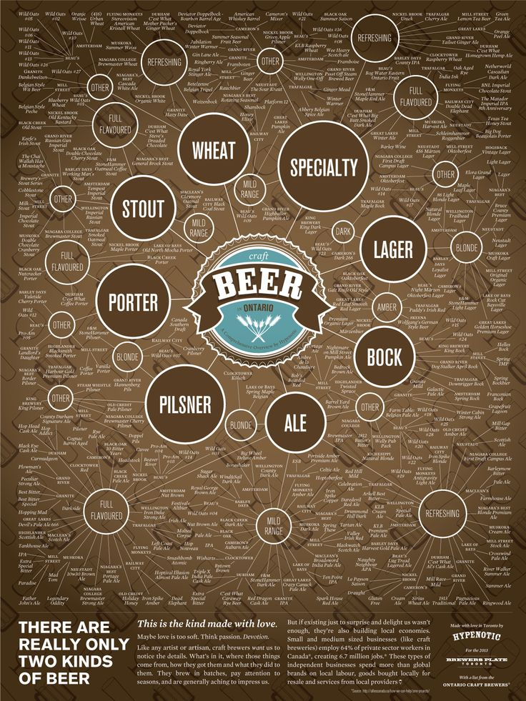 There's only one type of beer... an Ontario Craft Beer. Awesome infographic.