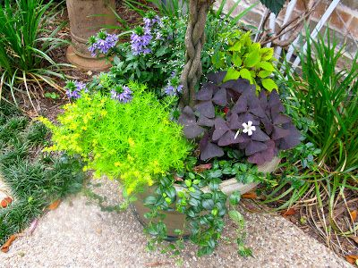 MAY DAYS: Small Patio Garden