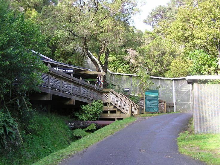 Zealandia Reviews : Wellington places to visit