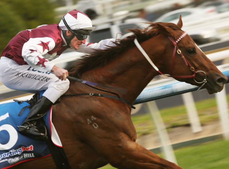 Trust In A Gust cruises to victory in the Le Pine Funerals Handicap