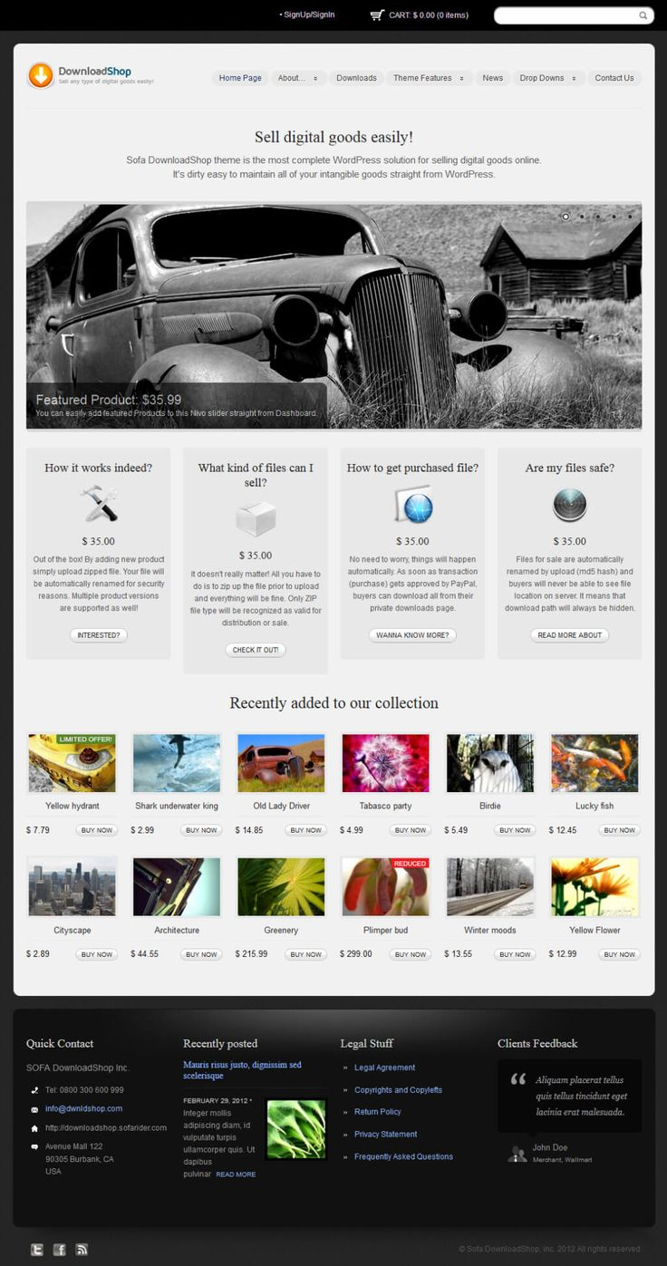 DownloadShop - WordPress Theme for Authors, eBooks, Digital Downloads Click the link to DEMO | DOWNLOAD NOW