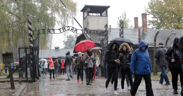 Experience the horrors of Auschwitz through the eyes of visiting North East school children - Chronicle Live