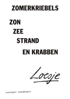 Loesje✏️Quotes on Pinterest | Poster, Vans and Dutch Quotes