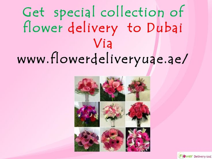 Get special collection of flower delivery to Dubai  Flowerdeliveryuae.ae has brought stirring news for all. Get online flower delivery to Dubai, UAE. This website is offering marvelous platform to buy & send flower to Dubai within a click. This is one of the alleged online flower portals, based in India. It has large area of shipping network all across Dubai.