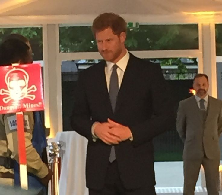 17 Best Images About Prince Harry On Pinterest