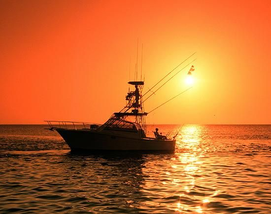 10 best images about fishing on pinterest fishing for Fishing trips corpus christi