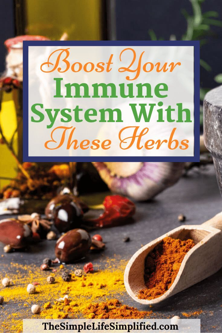 Boost Your Immune System With These 4 Herbs Herbs For Health