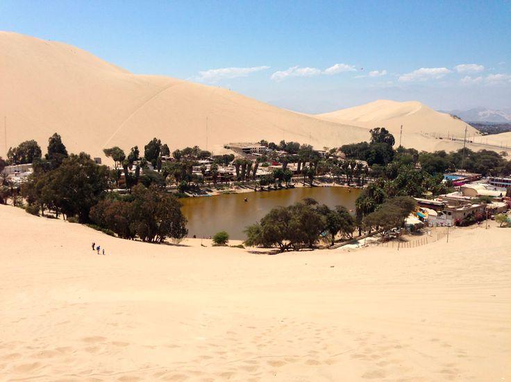 Arabian Peninsula Oases | www.pixshark.com - Images ...