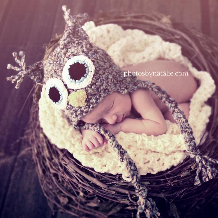 Photos by Natalie cute owl in nest.