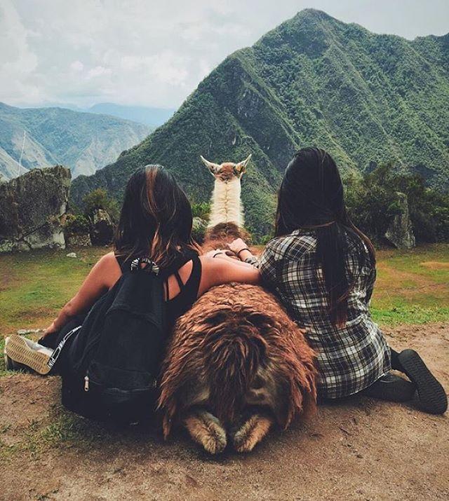 Machu Picchu, Perú. morning cuddles with friends #Travel #Latina