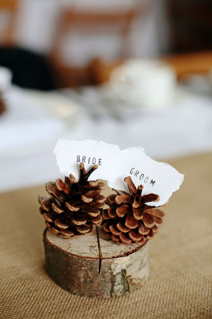 tree slab with pine cone as place name holder - Image by Dasha Caffrey - Rustic Wedding With Tartan Accents And Bride In Elegant Gown From Go Bridal With A Sassi Holford Veil And Rachel Simpson Shoes With Groom And Groomsmen In Kilts