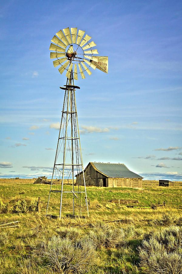 The Old Windmill, Montana.  Photo: Steve McKinzie