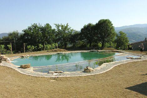 46 best bio piscina images on pinterest natural pools for Bio piscina
