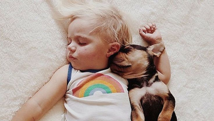 <p>Adorable napping duo, Theo and Beau, welcome a new baby sister to their daily routine.</p>
