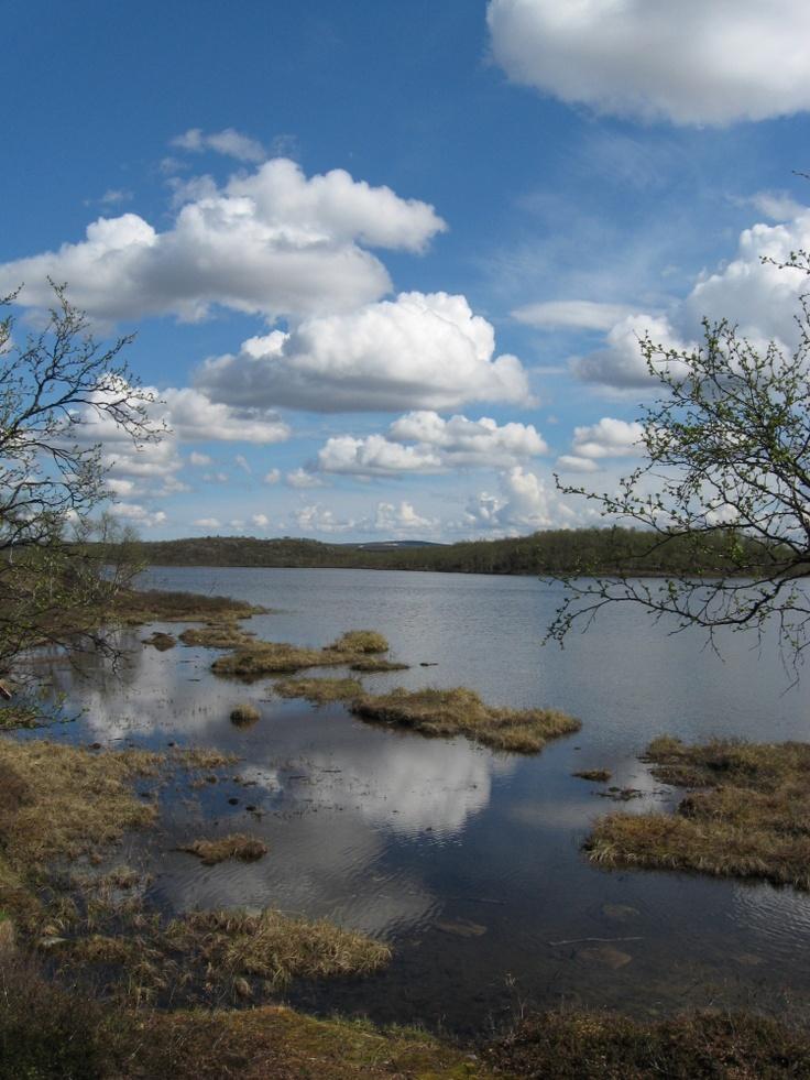 Iisakkijärvi