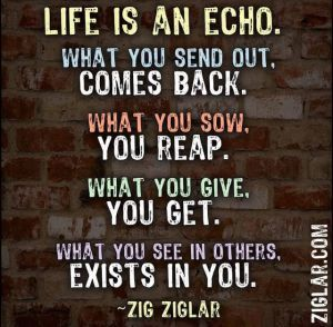 Life is an echo. What you send out, comes back. What you sow you reap. What you give you get - Zig Ziglar.