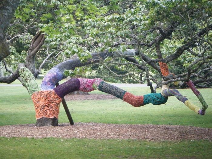 Yarnbombed tree, Memorial park, Hamilton NZ