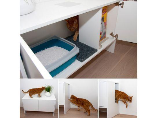 Casa Decorada para Gatos - Clique Arquitetura