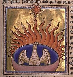The Phoenix: a mythical bird with a 500-1000 year lifespan (depending on the source). At the end of its life cycle it builds a nest of spices and ignites them.  Both the bird and nest are reduces to ashes from which a new, young phoenix arises.  The phoenix is a symbol of death, rebirth and immortality.