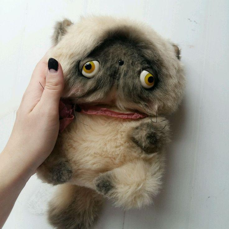 """Купить Кот тедди """"Кокос"""" - кот, тедди, тедди котенок, котенок, игрушка, мягкая игрушка"""
