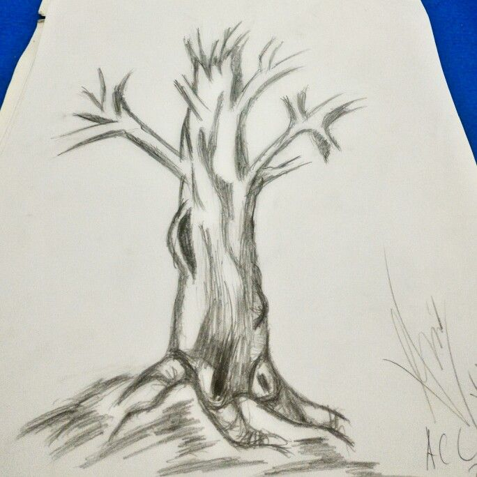 #tree #sketch #freedrawing