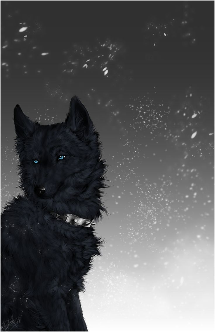 Wolf's Rain .:Blue:. by =WhiteSpiritWolf on deviantART
