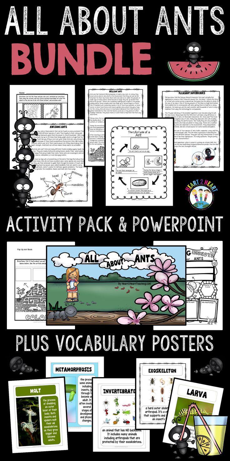 Ants Unit Bundle Reading Passages Vocabulary Posters Ants [ 1472 x 736 Pixel ]