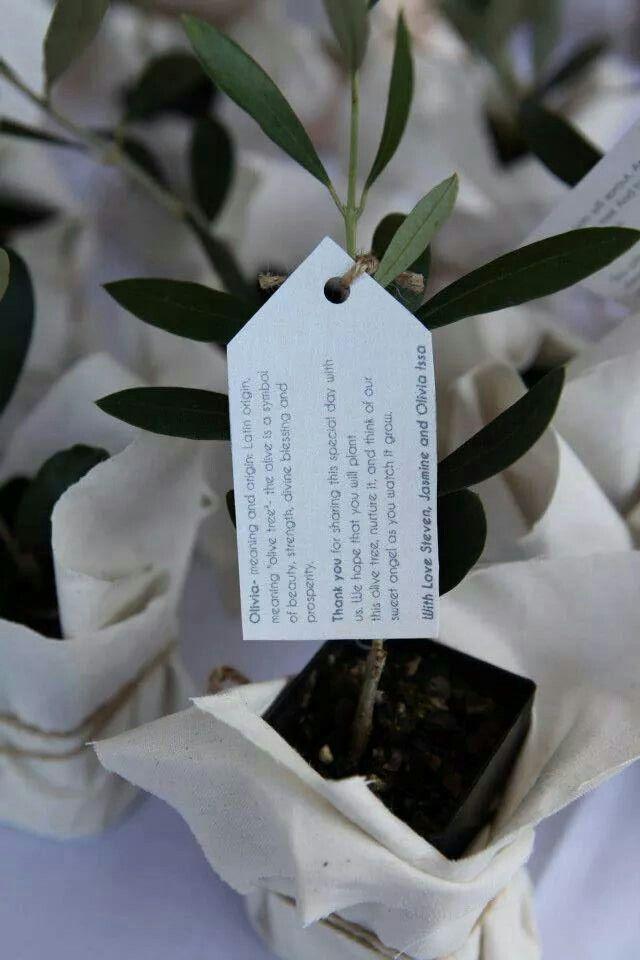 Christening Bonboniere for Olivia. Olive tree