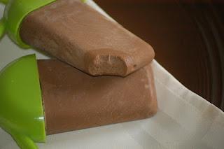 Sugar-Free Fudge Pops (also Dairy Free) | Satisfying Eats [ SkinnyFoxDetox.com ]