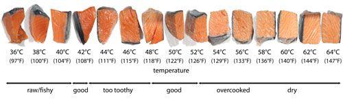 SalmonTemperatures