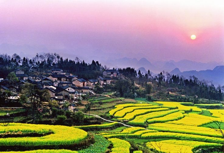 The famous rice terraces of Yunnan