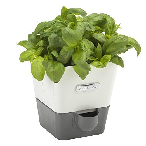 49 Gifts For People Who Are Hard To Buy For Herb Garden 400 x 300