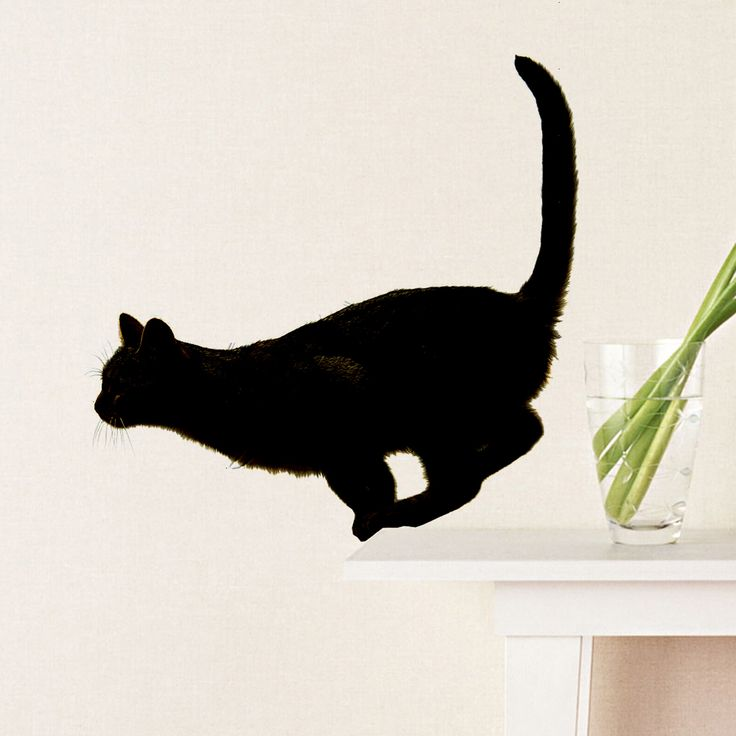 Jumping Cat – Wall Stickers