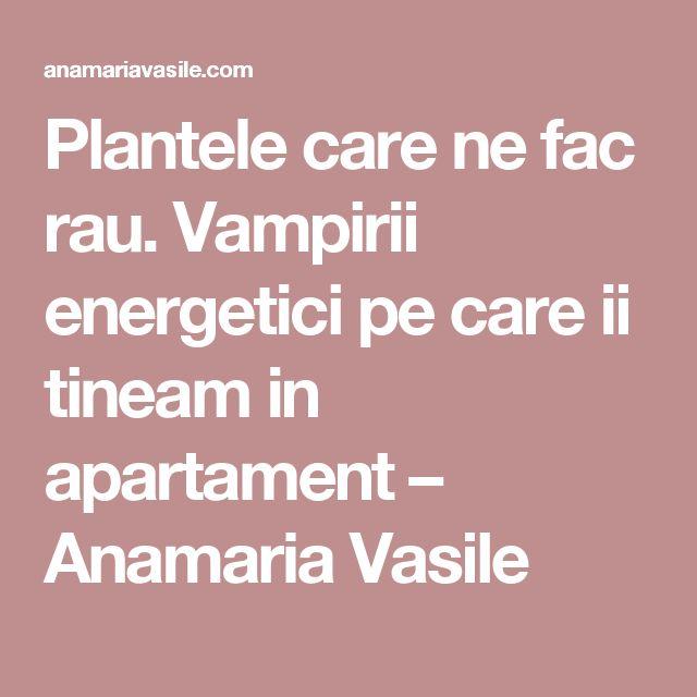 Plantele care ne fac rau. Vampirii energetici pe care ii tineam in apartament – Anamaria Vasile