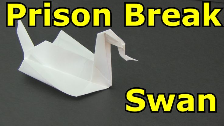 how to make an origami swan a4
