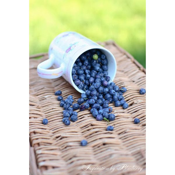 Blueberry:Summer Dreams found on Polyvore