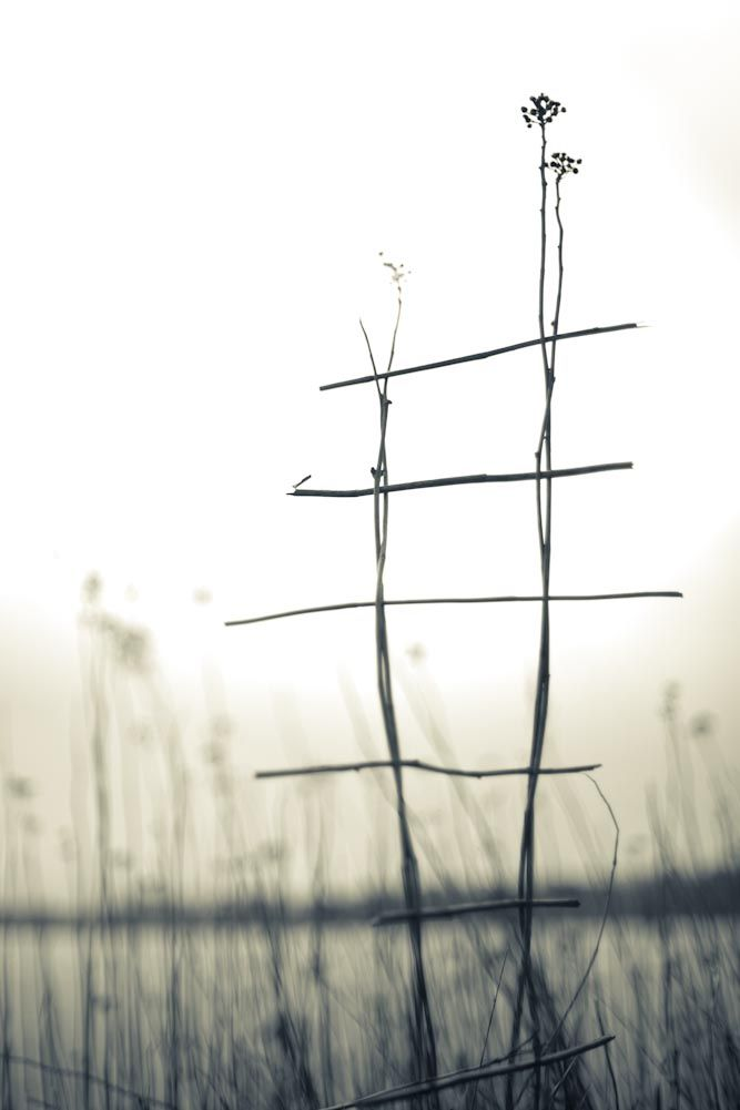 photo by Tim Johnson: 'Between Sea and Sky' project