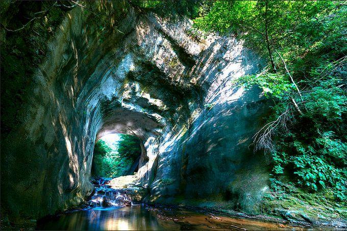 まるでジブリの世界!千葉県にある隠れた秘境「濃溝の滝」知ってる? | RETRIP[リトリップ]
