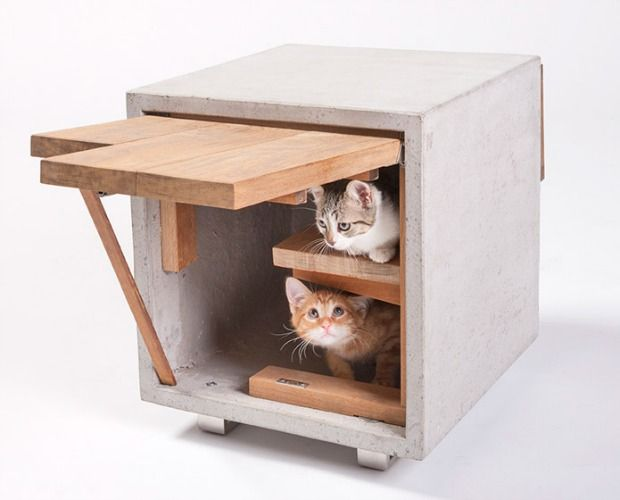 Unique Cat Homes Design for Charity - Modern Pet Architecture - Good Housekeeping