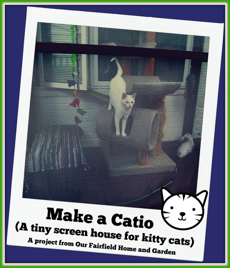 Well known 26 best catio images on Pinterest | Outdoor cat enclosure, Catio  CD62
