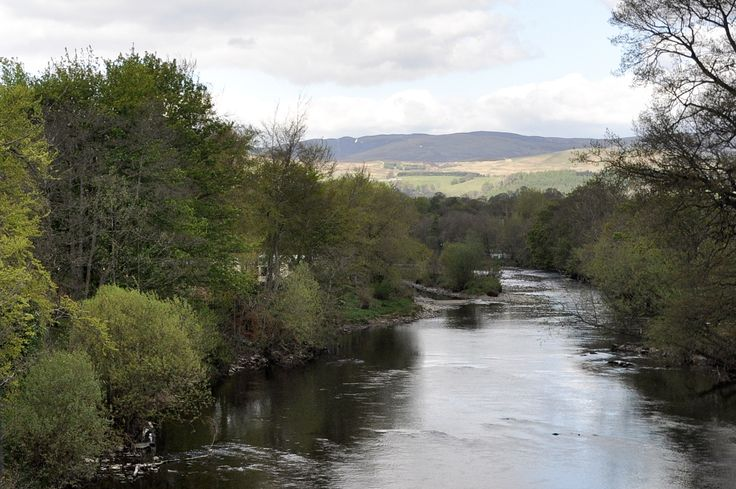 Schotland_Crieff_River_Earn_7-05-2010_13-33-30.JPG 1775×1180 pikseliä