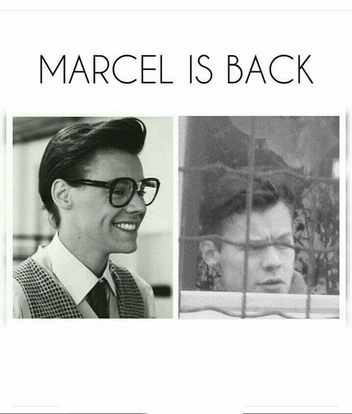 Marcel is adorable. I'll take him in a New York minute.
