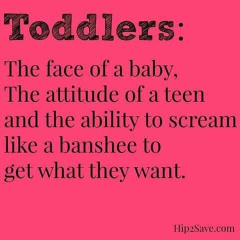 Toddler Quotes Extraordinary Best 25 Toddler Quotes Ideas On Pinterest  Funny Toddler Quotes