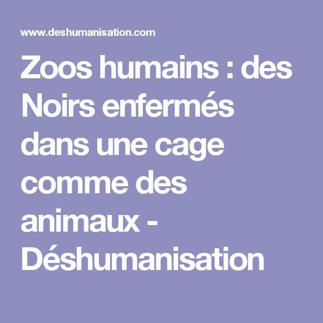 Zoos humains : des Noirs enfermés dans une cage comme des animaux  - Déshumanisation