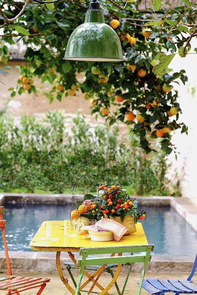 Самое приятное и расслабляющее место в доме в тени старого дерева в саду.  (средиземноморский,средиземноморский интерьер,средиземноморский дом,средиземноморский стиль,деревенский,сельский,кантри,архитектура,дизайн,экстерьер,интерьер,дизайн интерьера,мебель,на открытом воздухе,патио,балкон,терраса) .