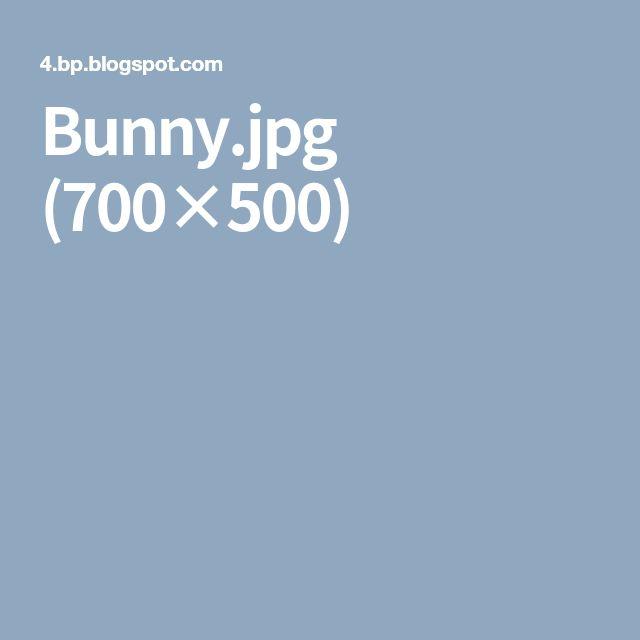 Bunny.jpg (700×500)