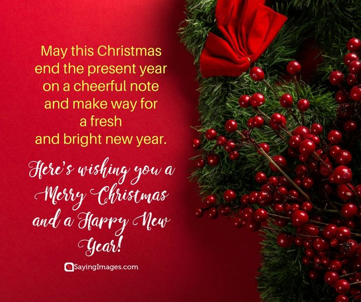 Have A Merry Christmas &  A Happy New Year!