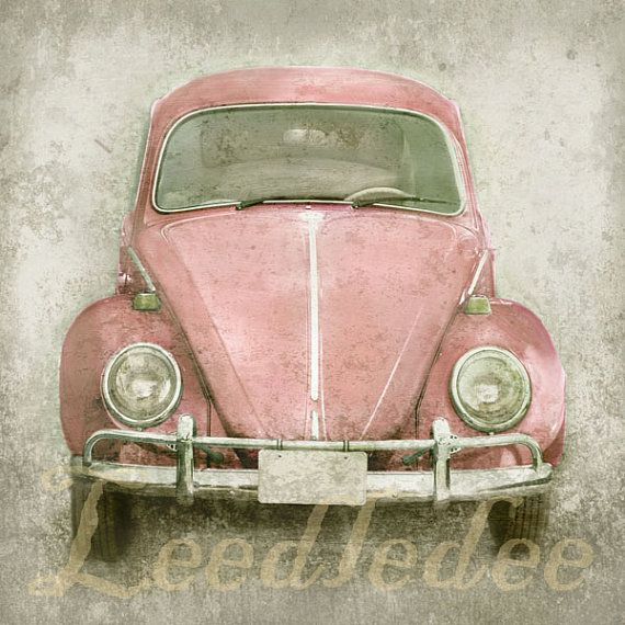 Pink Bug or CHOOSE your color  Original Photograph by leedledee, $28.00