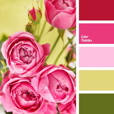 Bright pink shades will look even brighter on the background of green pear color and dark olive. This combination of colors is appropriate in a bedroom and.
